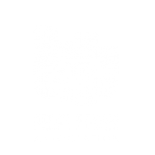 Pedal Power 2